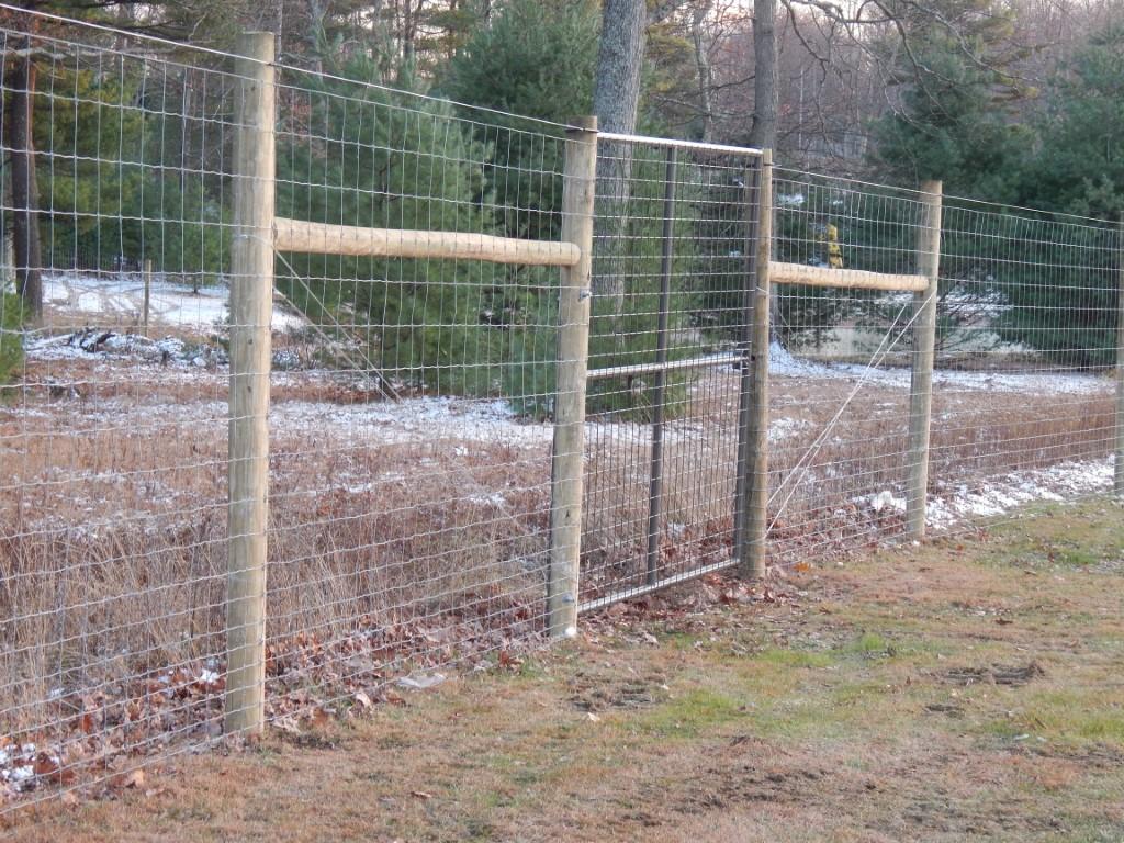Fencing 144 (Medium)